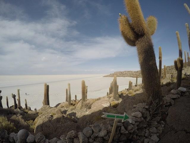 乾季にしか行けないインカワシ島。鏡張りが見られなくても絶景は楽しめます。