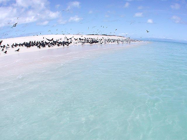 サンゴの欠片が堆積してできた砂の島ミコマスケイ