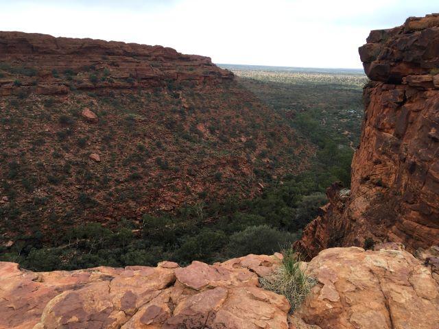 オーストラリアのグランド・キャニオンと呼ばれるキングス・キャニオン